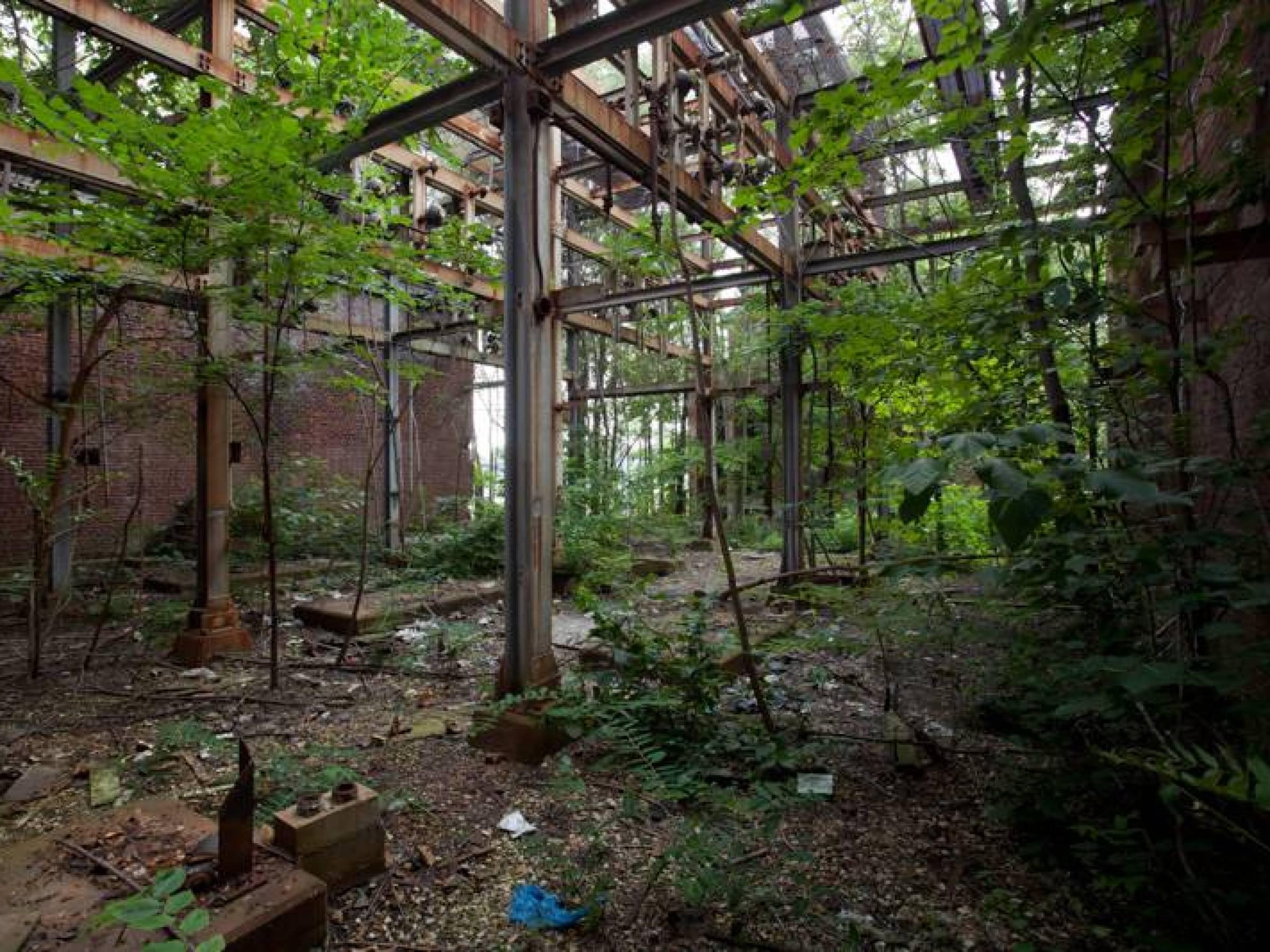 Ett övergivet Detroit, USA.