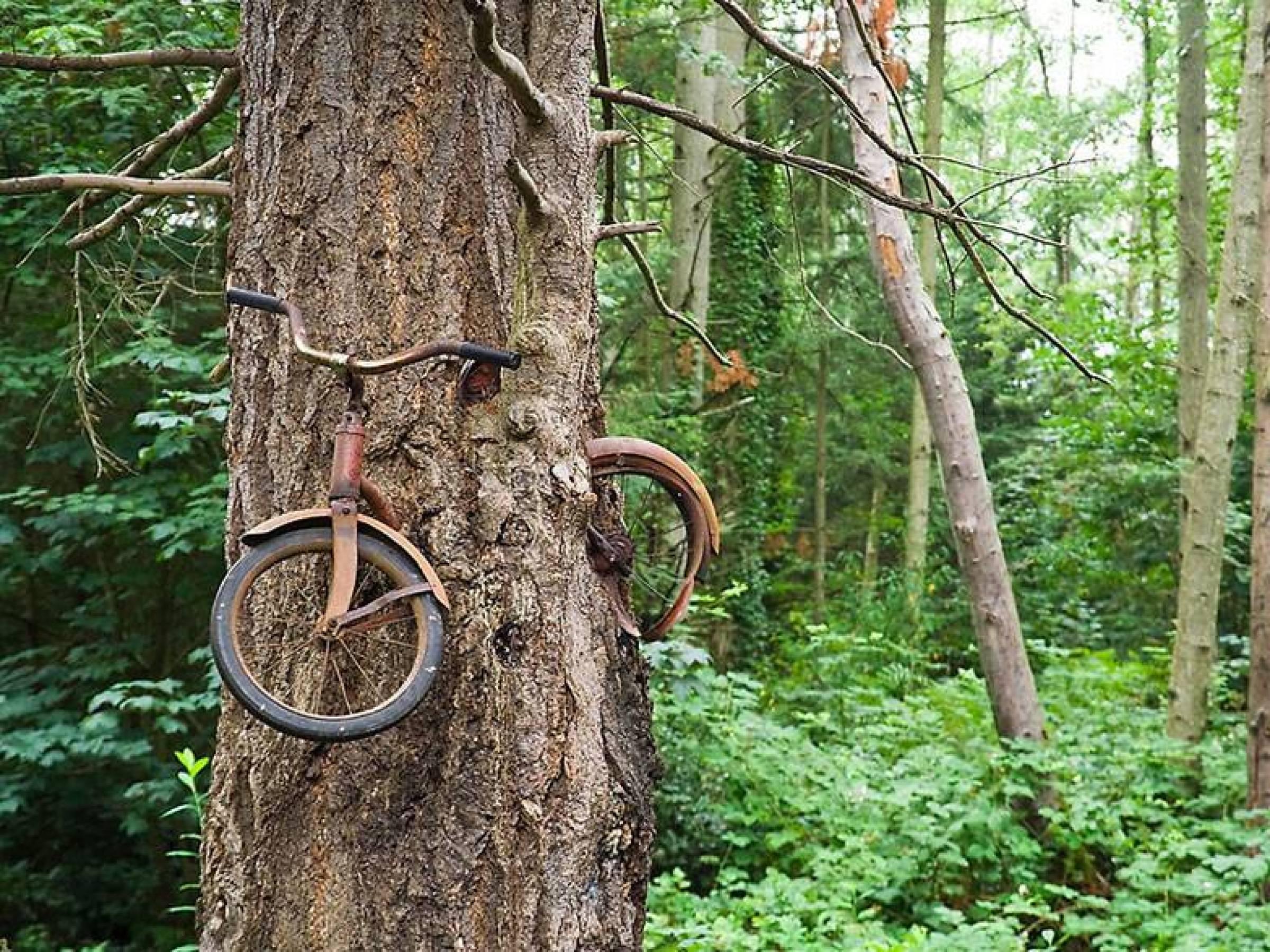 En gammal cykel.